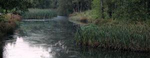 Hiljaa virtaa Mätäjoki (KUVA: Katriina Ylönen)